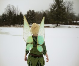 Tinker Bell in the Winter Woods
