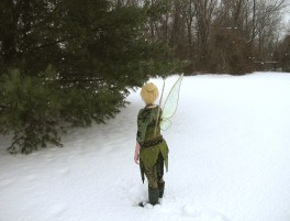 TinkerBell in the Winter Woods